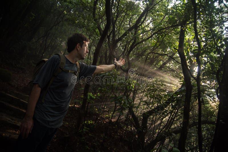 Hiker и лучи солнца стоковое фото
