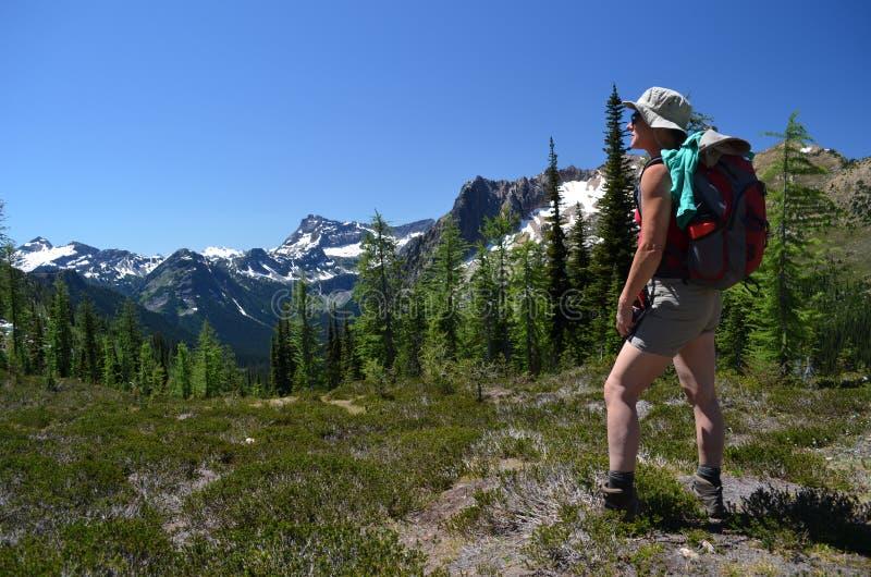Hiker на верхней части горы стоковые фотографии rf