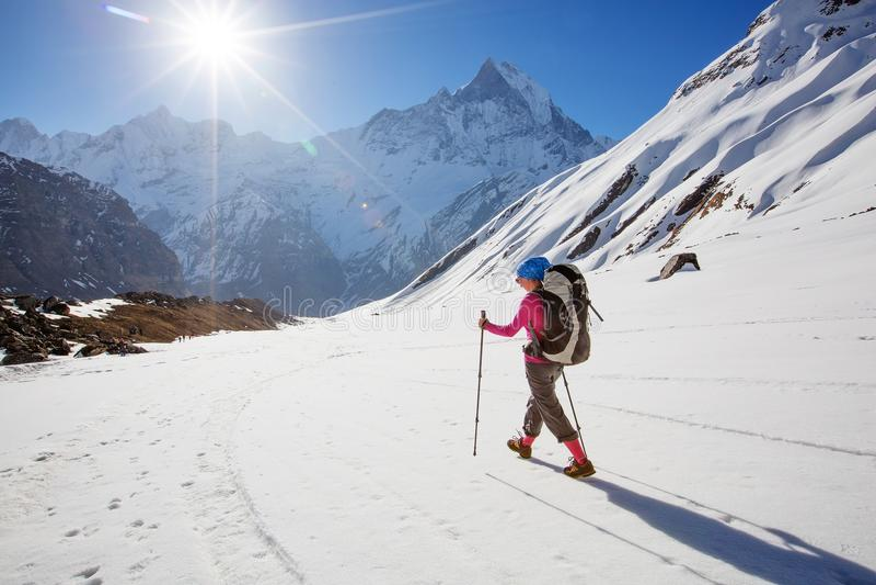 Hiker на треке в Гималаях, долине Annapurna, Непале стоковые изображения rf