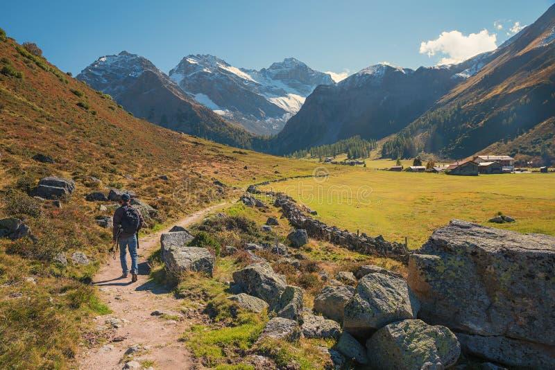 Hiker на швейцарской долине горы около davos стоковое изображение rf