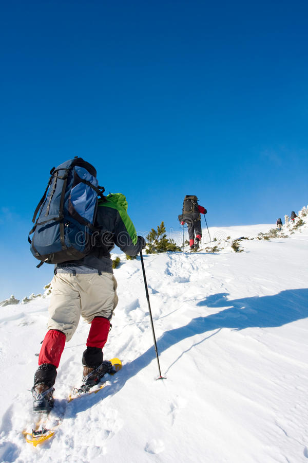Download Hiker stock photo. Image of equipment, hiker, sports - 11001642