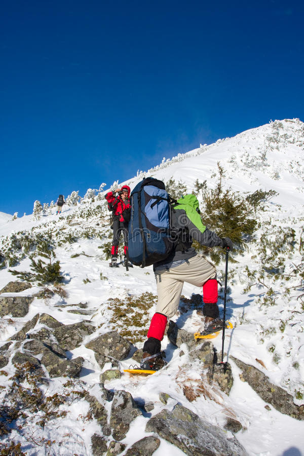 Download Hiker stock photo. Image of snowshoe, extreme, hiking - 11001652