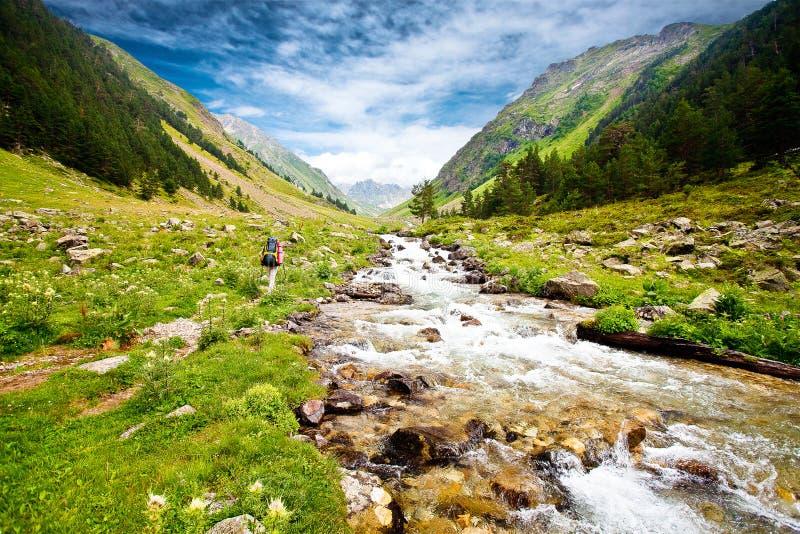 hiker стоковые изображения