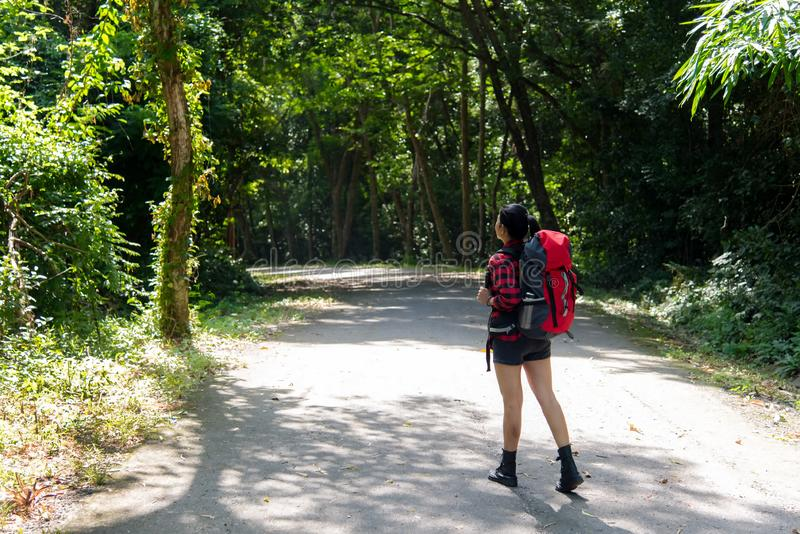 Hiker asia woman standing on forest trail and looking away in vacations day. Female with backpack and camping on hike in nature royalty free stock image