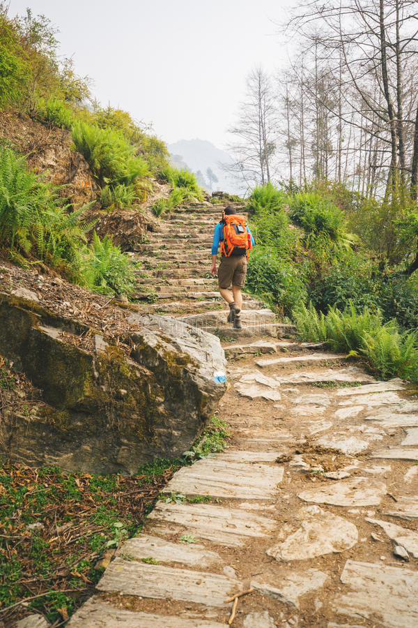 Hiker with backpack. Climb the stairs in Himalayas stock photos