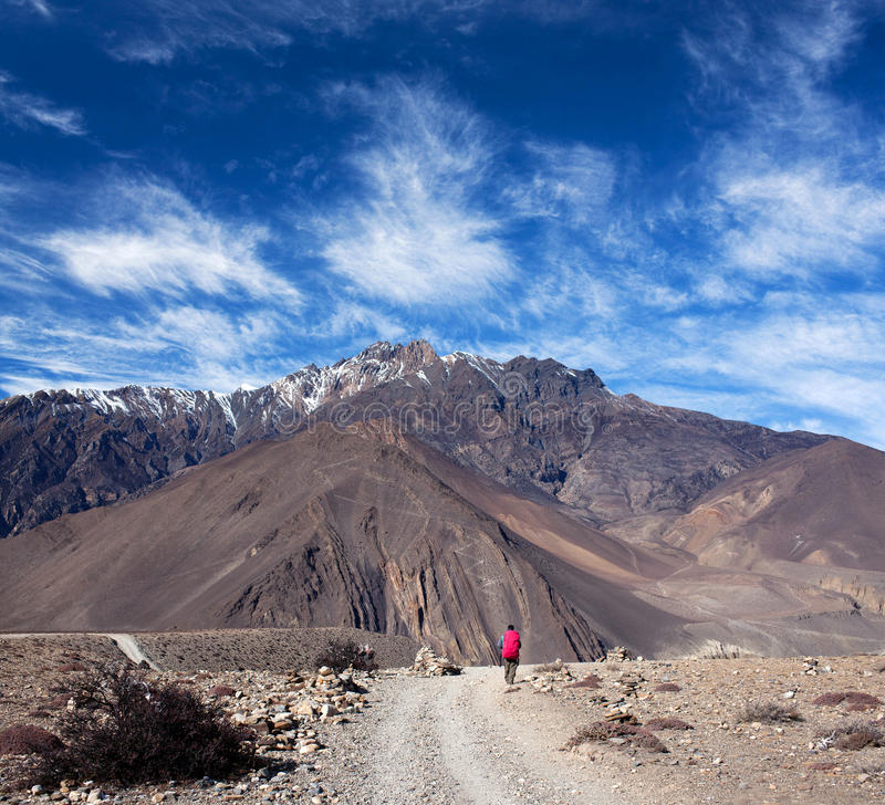 Hiker with backpack walking on the road from Muktinath to Jomsom on Annapurna Circuit trek, Nepal. An unidentified hiker with backpack walking on the road from stock photo