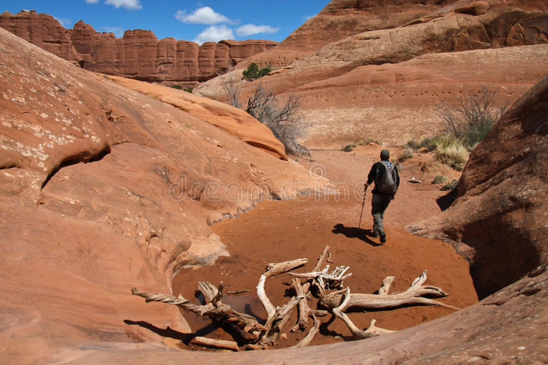 Hiker in a canyon. An active hiker is exploring a canyon in Arches National Park royalty free stock photography