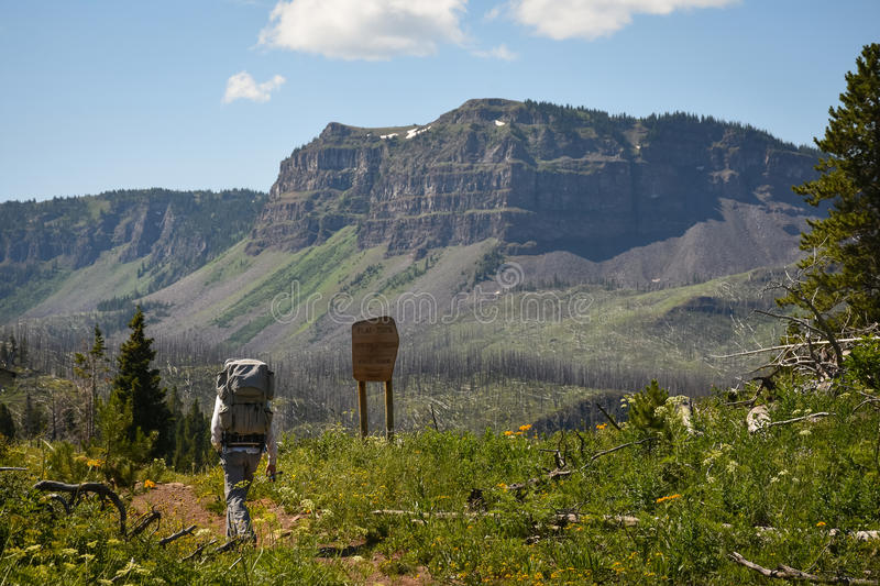Hiker On Colorado Flattops Mountain Trail By Trappers Lake. In Summer royalty free stock images