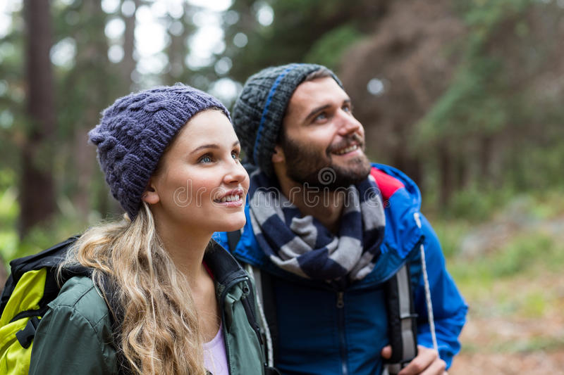 Hiker couple looking at nature in forest royalty free stock images
