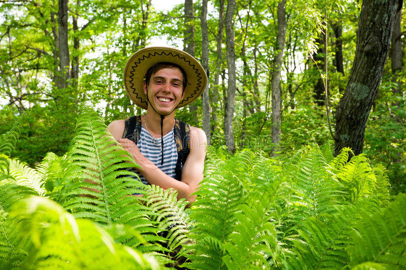 Hiker & ferns.tropical climate royalty free stock images