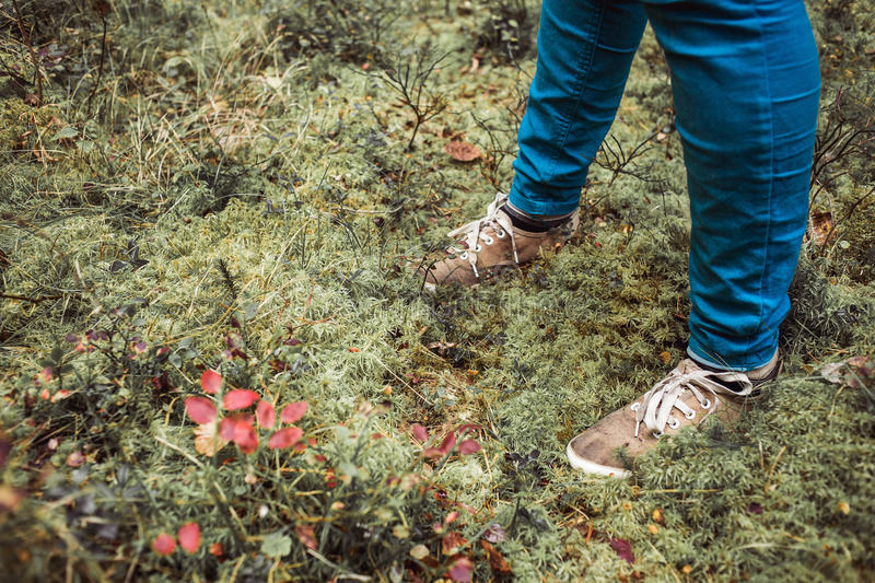 Hiker on forest moss with hiking boots Detail photo copy space royalty free stock photo