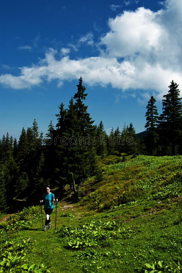 Hiker girl in the mountains royalty free stock images
