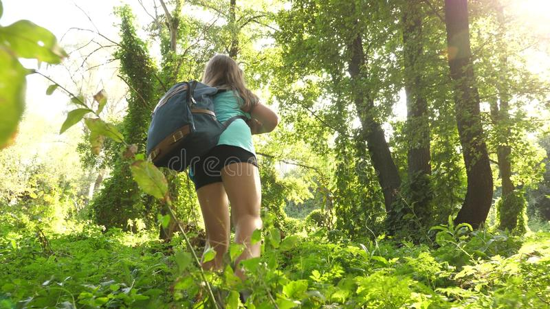 Hiker girl tourist makes his way through thicket. teenager adventures . happy girl traveler with a backpack spins in royalty free stock image