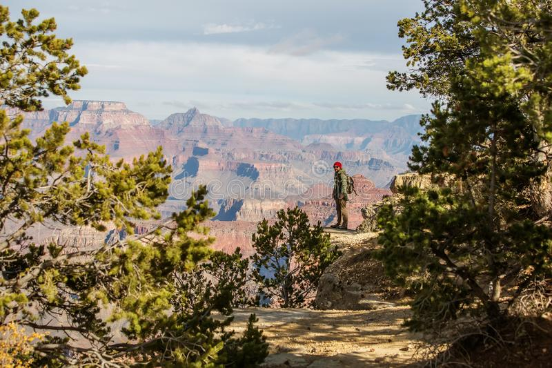 A hiker in the Grand Canyon National Park, South Rim, Arizona, USA royalty free stock image