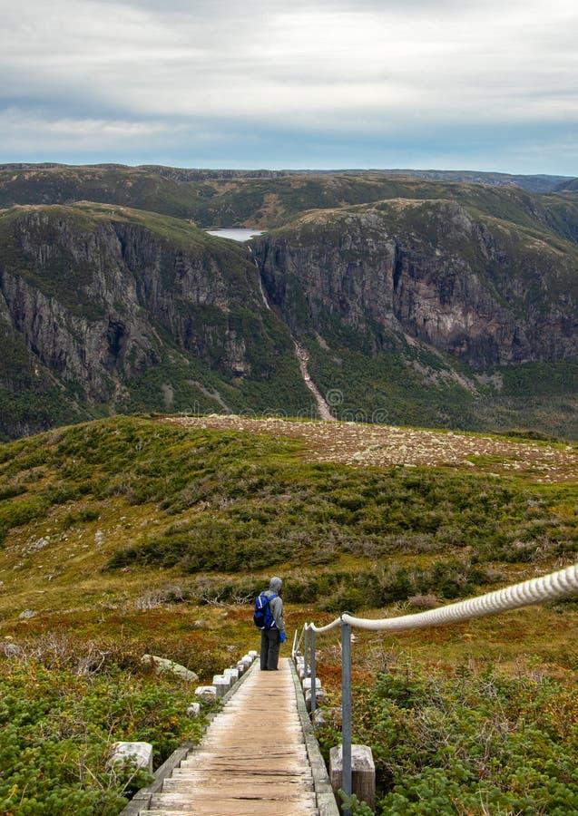Hiker Gros Morne принимая во взгляд стоковые фото