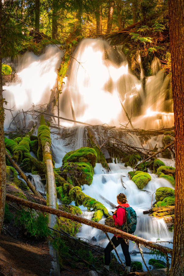 Hiker looking at Clearwater Falls Oregon Vertical Composition stock images