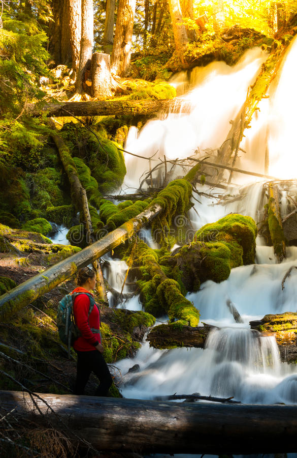 Hiker looking at Clearwater Falls Oregon Vertical Composition royalty free stock photography