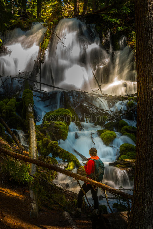 Hiker looking at Clearwater Falls Oregon Vertical Composition royalty free stock images