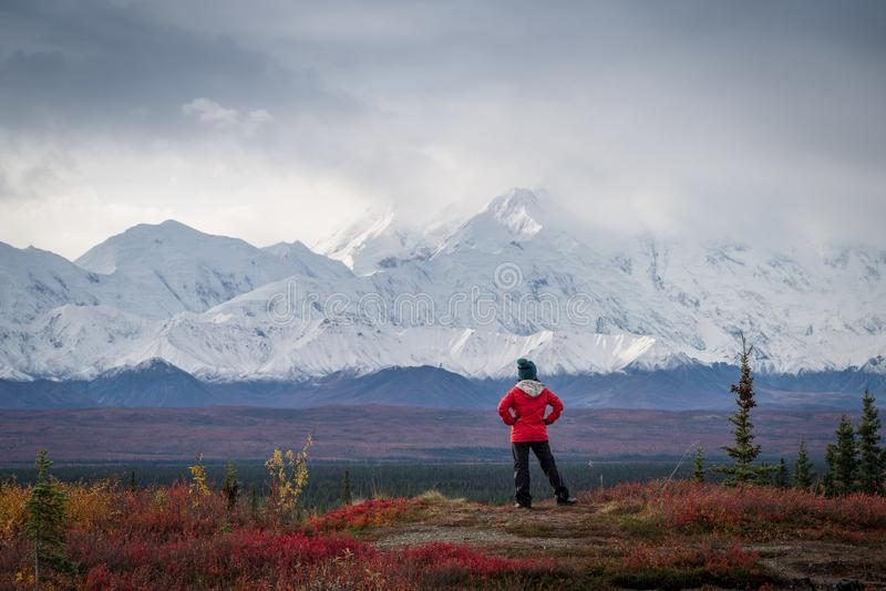 Hiker in the mountains royalty free stock photo