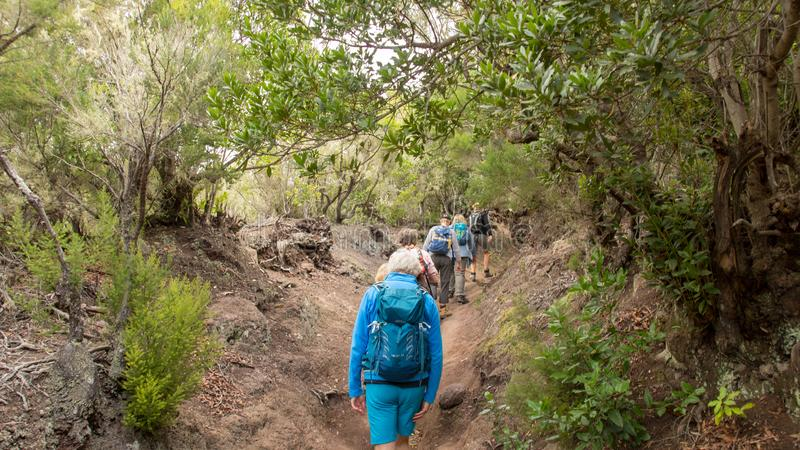 Hiker in the National Park Garajonay, La Gomera royalty free stock image