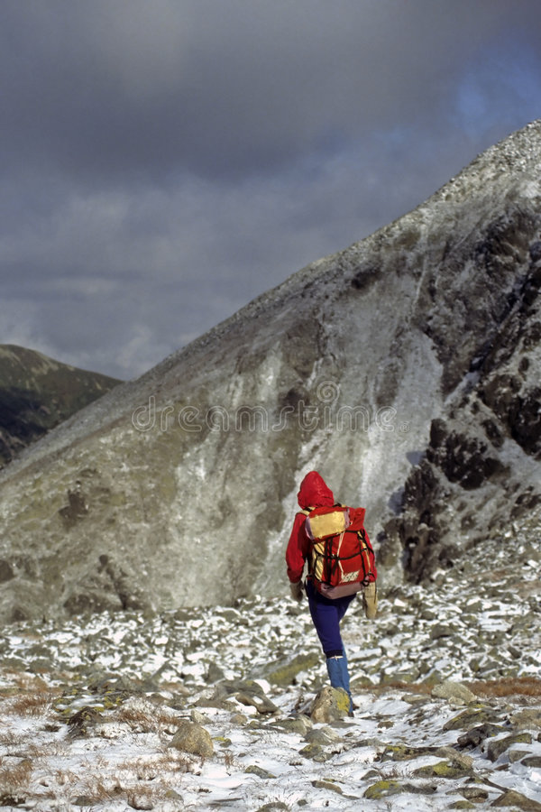 Hiker in new snow,