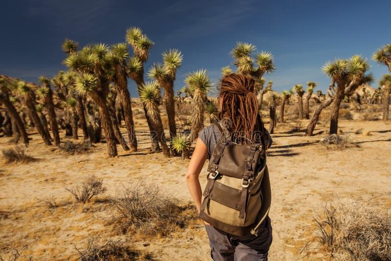 Hiker no parque nacional de joshua fotografia de stock royalty free