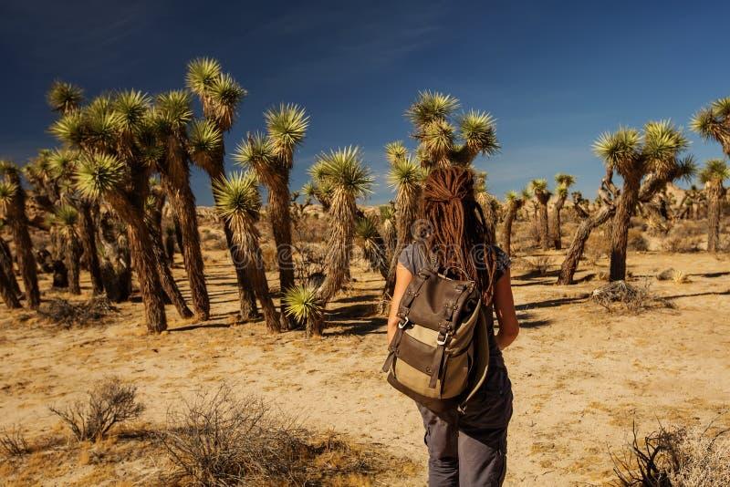 Hiker no parque nacional de joshua imagens de stock