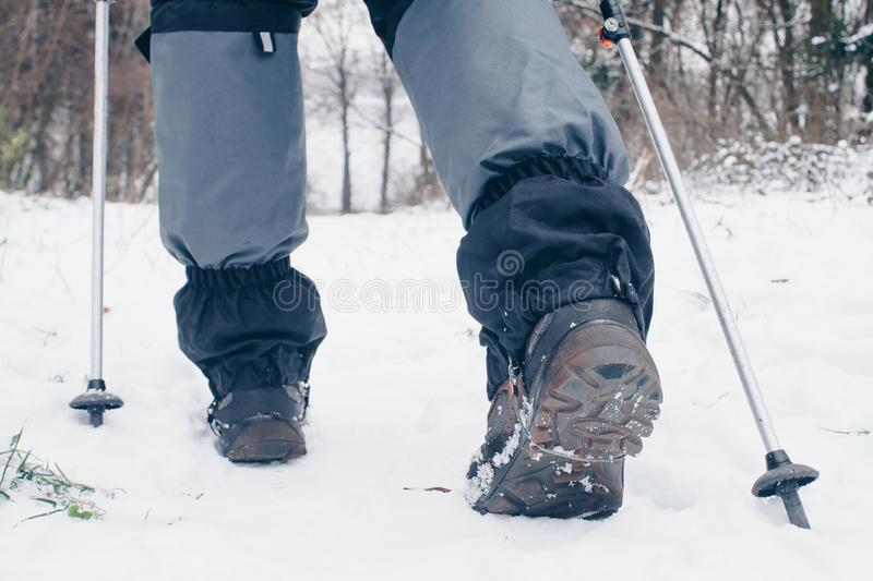 Hiker`s boots with trekking poles and gaiters going backward in the winter forest.  royalty free stock photography