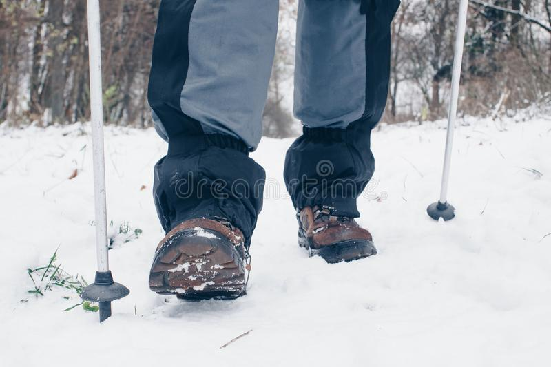 Hiker`s boots with trekking poles and gaiters going forward in the winter forest.  stock photography