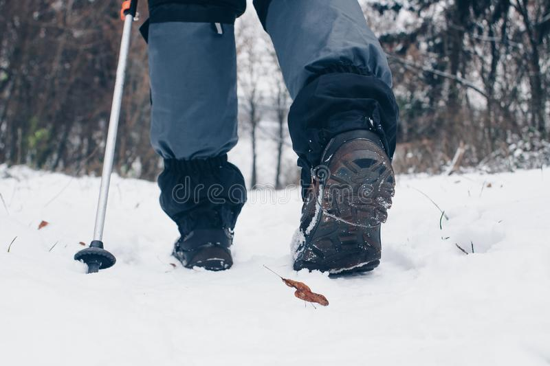 Hiker`s boots with trekking poles and gaiters in the winter forest. Lifestyle, going backward.  stock photography