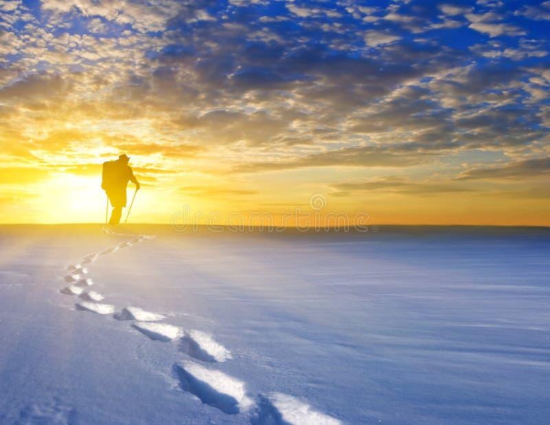 Hiker Among A Snowbound Plain Stock Image