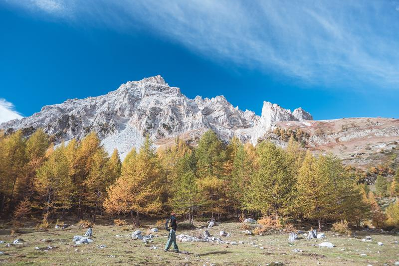 Hiker walking on a colorful valley with great panoramic view and autumnal vivid colors. Wide angle shot in the Italian French Alps stock images