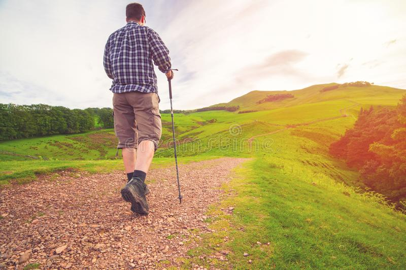 Hiker with walking sticks walks up the pathway to a hill. With view on green valley on the background stock photography