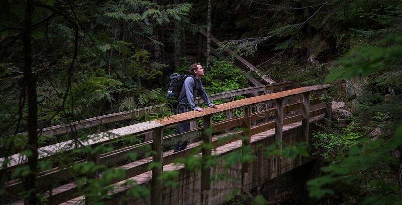 Hiker on wooden bridge royalty free stock images