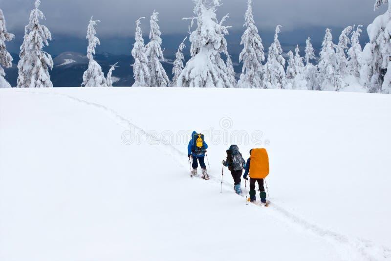 hikers группы стоковое изображение rf