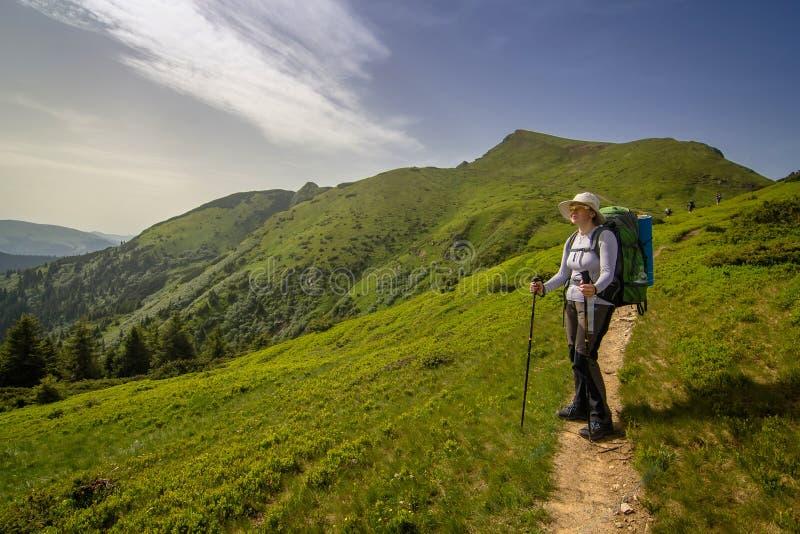 Hikers девушки в прикарпатских горах Украина стоковые фотографии rf