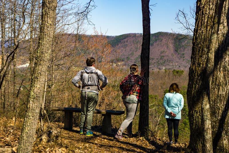 Hikers наслаждаются взглядом от следа петли горы самца оленя стоковое изображение rf