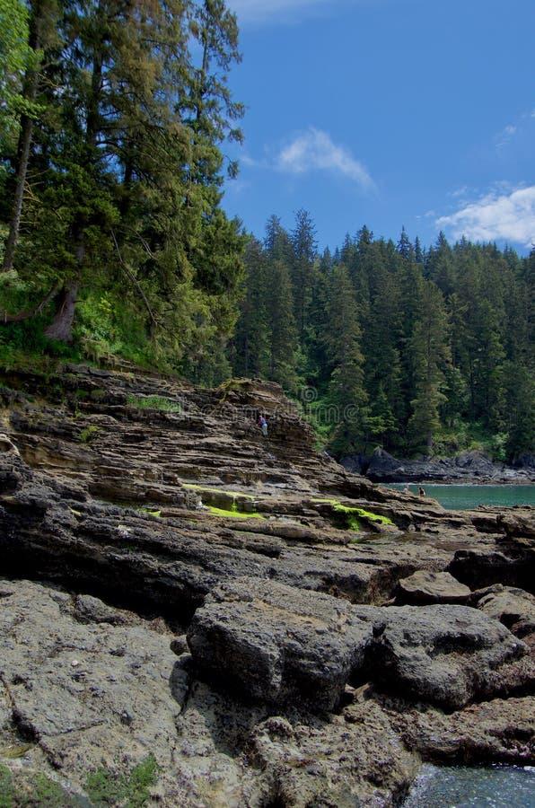 Hikers наслаждаются скалистым побережьем около пляжа Sombrio, острова ванкувер стоковое фото