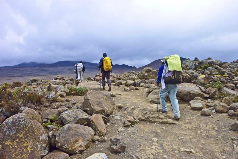 Hikers на Mount Kilimanjaro стоковые изображения rf