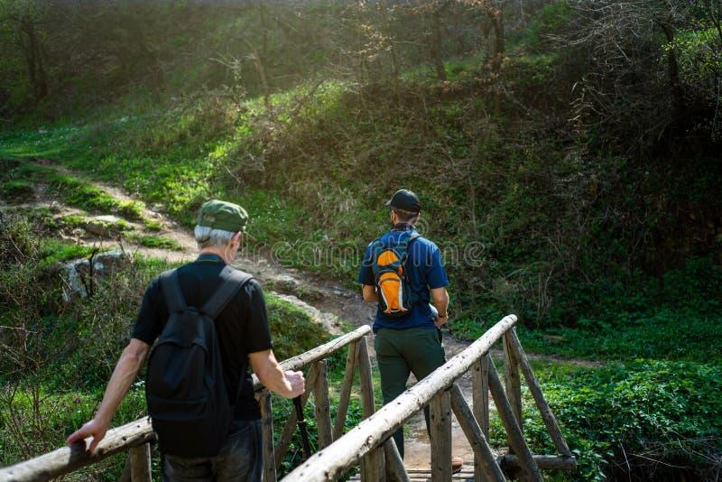 Hikers пересекая деревянный мост outdoors стоковые изображения rf