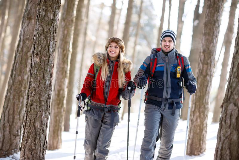 Hikers соединяют в зиме в лесе стоковые фото