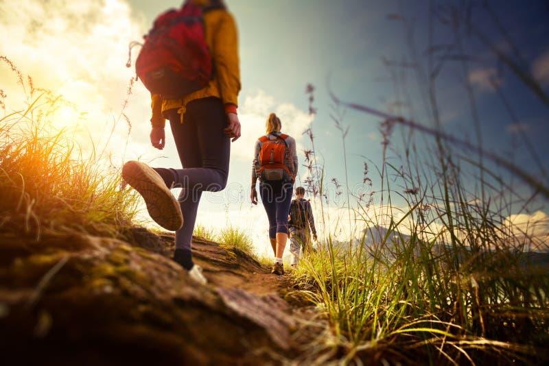 hikers fotos de stock royalty free