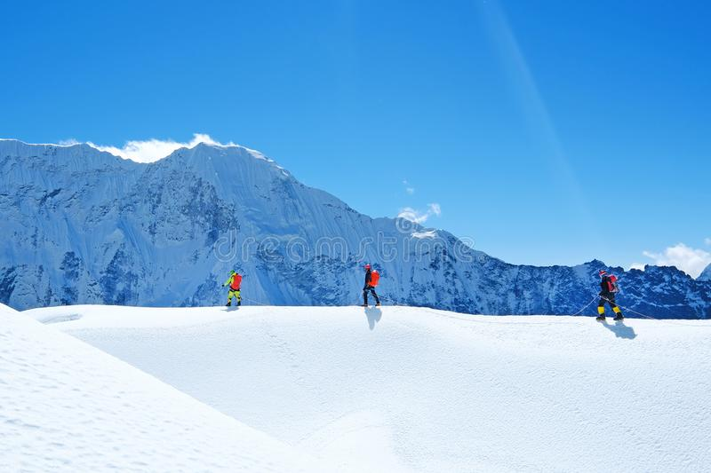 Hikers with backpacks reaches the summit of mountain peak. Success freedom and happiness achievement in mountains. Active sport royalty free stock photos