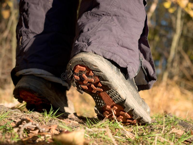 Hikers boots on forest trail. nature park among the leaves stock photos