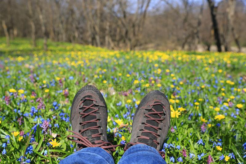 Hikers boots on meadow stock photography