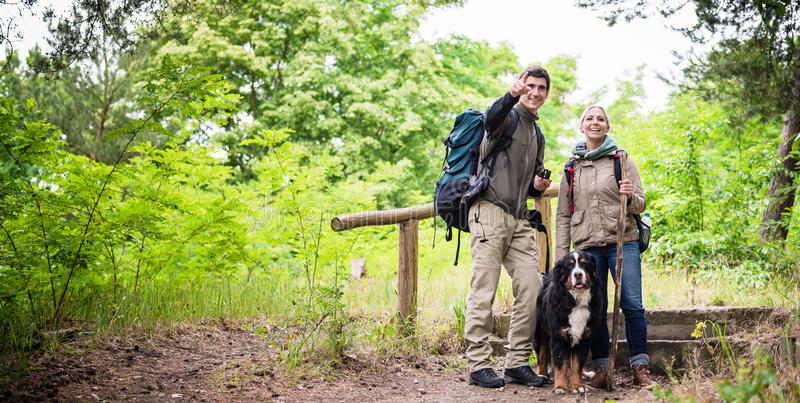 Hikers with dog in forest stock image