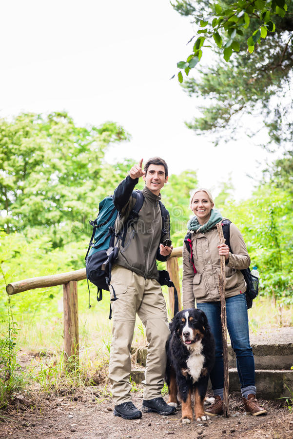 Hikers with dog in forest royalty free stock image