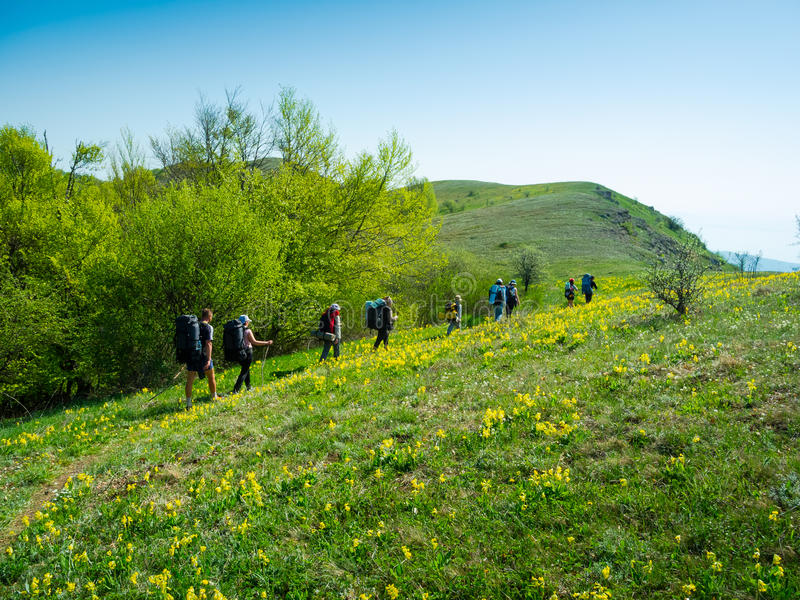 Download Hikers Group Trekking In Crimea Stock Photo - Image of hill, crimea: 36777752