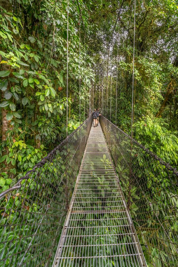 Hikers on a rope bridge across the jungle canopy. In Mistico Park Costa Rica stock photos