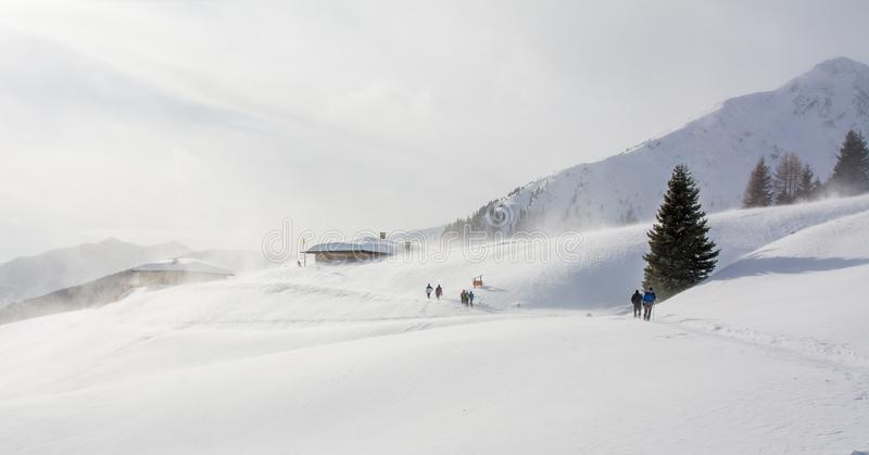 Snowstorm in the mountains at winter time. Mountains of Trentino Alto Adige, South Tyrol stock images